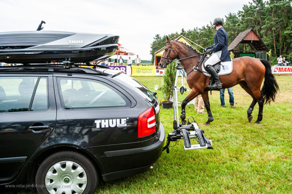 Land Rover Car vs Horse
